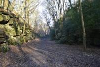 ryburn-valley-208